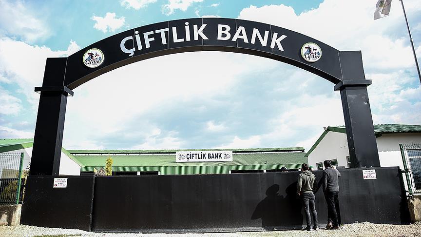 Adalet Bakanı'ndan Çiftlik Bank hakkında açıklama!