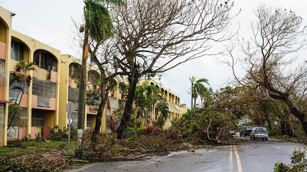 Porto Riko'daki kasırgada 4 bin 600 kişi hayatını kaybetti