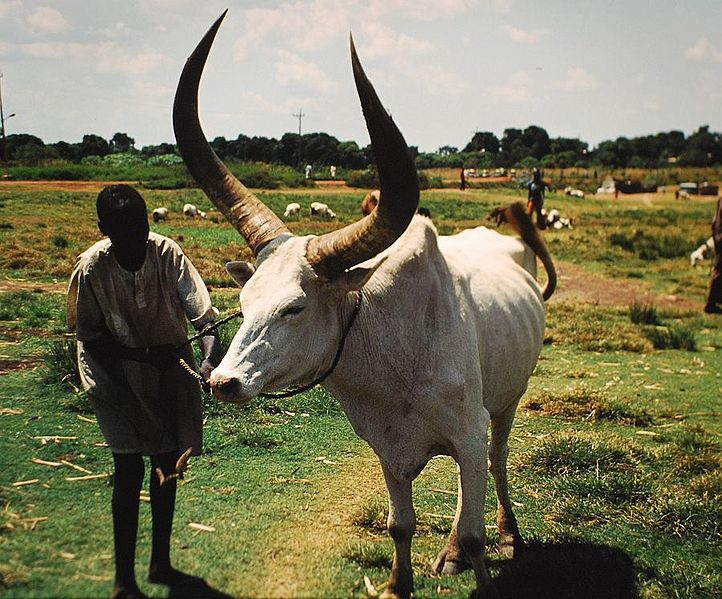Sudan'da et boykotu
