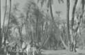 Hindistan hacı adaylarının Kabe'yi görene kadar okudukları Şah-ı Medine naatı