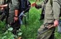 PKK'nın kırmızı bültenle aranan sözde 'İskandinavya...