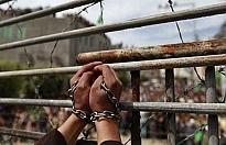 100 Filistinli daha İsrail hapishanelerinde