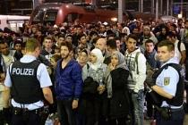 Almanya'dan kalifiye göçmen kotası