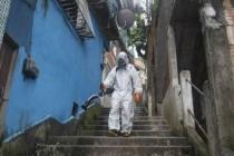 Brezilya'da son 24 saatte Kovid-19 nedeniyle 275 kişi öldü