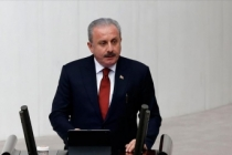 TBMM Başkanı Şentop'tan Lübnan'a taziye mesajı