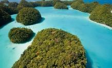 Mercan kayalıklarını korumak için güneş kremi yasaklanıyor