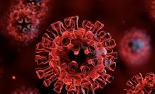 Covid-19 Ölüm Oranını ve Sağlık Hizmeti Talebini Azaltmada İlaç Dışı Müdahalelerin (NPL) Etkisi