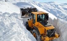 Bitlis'te 4 metrelik kar | FOTO