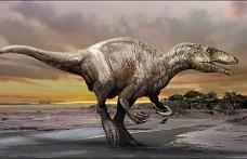 Brezilya'da, yeni bir dinozor türü keşfedildi