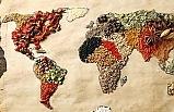 Afrika gıda sanayi yüzde 400 büyüyecek