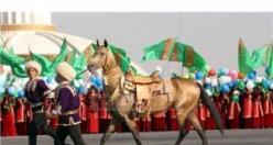 Türkmenistan'da at bayramları