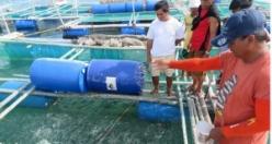 TİKA, Filipinler'de balık tutmayı öğretiyor