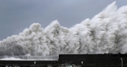Japonya'da tayfun felaketi