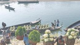 Bangladeş'in semt pazarları