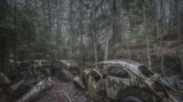 Ormanda gizli oto mezarlığı