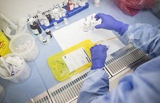 Kanser hücrelerinin artışını durduran yeni bir...