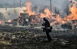 Yunanistan'daki yangın faciası ile ilgili 'kundaklama...
