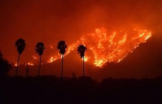 California ormanları ay sonuna kadar yanabilir