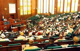 Nijerya'da güvenlik krizi