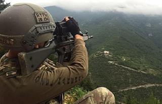 Bitlis'te operasyona devam