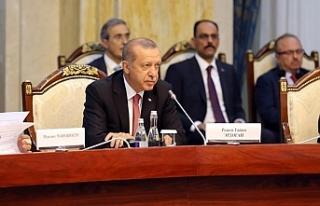 'Türk Konseyi'nde önemli kararlar alacağız'