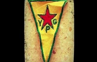 Uluslararası Raporlarda  Terör Örgütü YPG