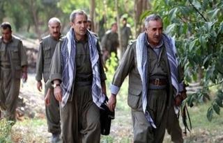 Diyarbakır'dan kaçan mahkumlar Kandil'deymiş