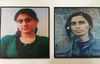 Siirt'te öldürülen PKK'lıların kimliği belli...