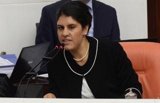 HDP'li yeğen Öcalan'a hapis cezası