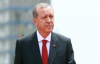 Malezya'dan Erdoğan'a destek programı