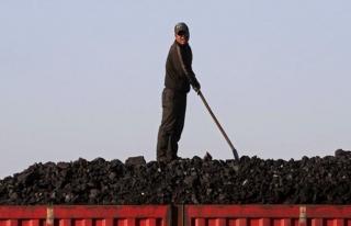 Çin, Kuzey Kore'den kömür ve balık ithalatını...