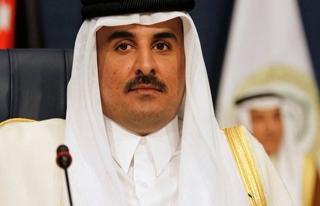 Katar Emiri Al Sani, Türkiye'ye geliyor