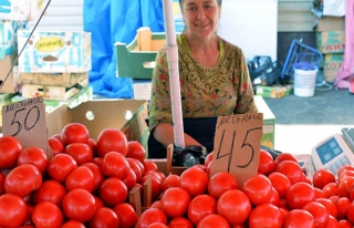 Rusya'dan beklenen domates haberi geldi