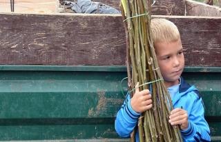 TİKA'dan Bosnalı ailelere ceviz fidesi desteği