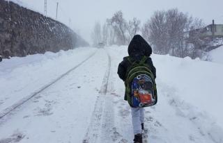 Bingöl'de eğitime kar tatili
