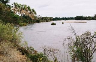 Somali'de kuruyan nehir su krizi çıkarabilir