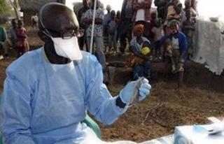 Batı Afrika'daki 3 ülkede 'Lassa sıtması' alarmı