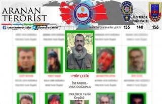 Yeşil listedeki PKK'lı etkisiz hale getirildi