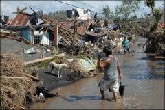 Filipinler'de tayfun: 1000 ölü