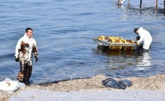 İzmir'de petrol sızdıran gemiye 1 milyon 644 bin TL ceza