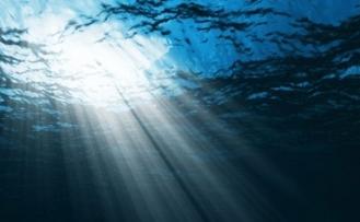 Okyanuslar 1950'den bu yana 77 milyar ton oksijen yitirdi