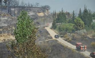 Antalya'da büyük orman yangını
