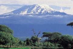 Kilimanjaro karları Nil'e karışacak