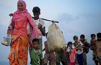 Arakanlılar evlerine 'vatandaş' olarak dönmek istiyor
