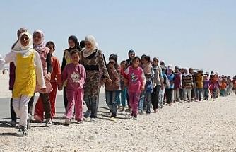Arap Birliği mülteci sorununa ortak çözüm arayışında