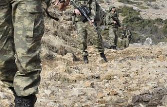 Şırnak'ta 2 PKK üyesi teslim oldu