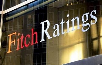Fitch ABD'yi  mali açık konusunda uyardı