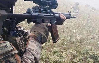 Siirt'te 3 PKK'lı etkisiz hale getirildi