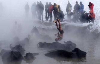 Manda ve atların 'kaplıca keyfi'ne fotoğrafçı akını