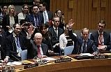 BM Güvenlik Konseyi'nin reformunu gerekli kılan yapısal – İşlevsel problemler ve çözümü erteleyen engeller